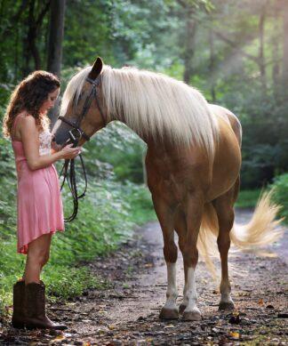 Koňaři